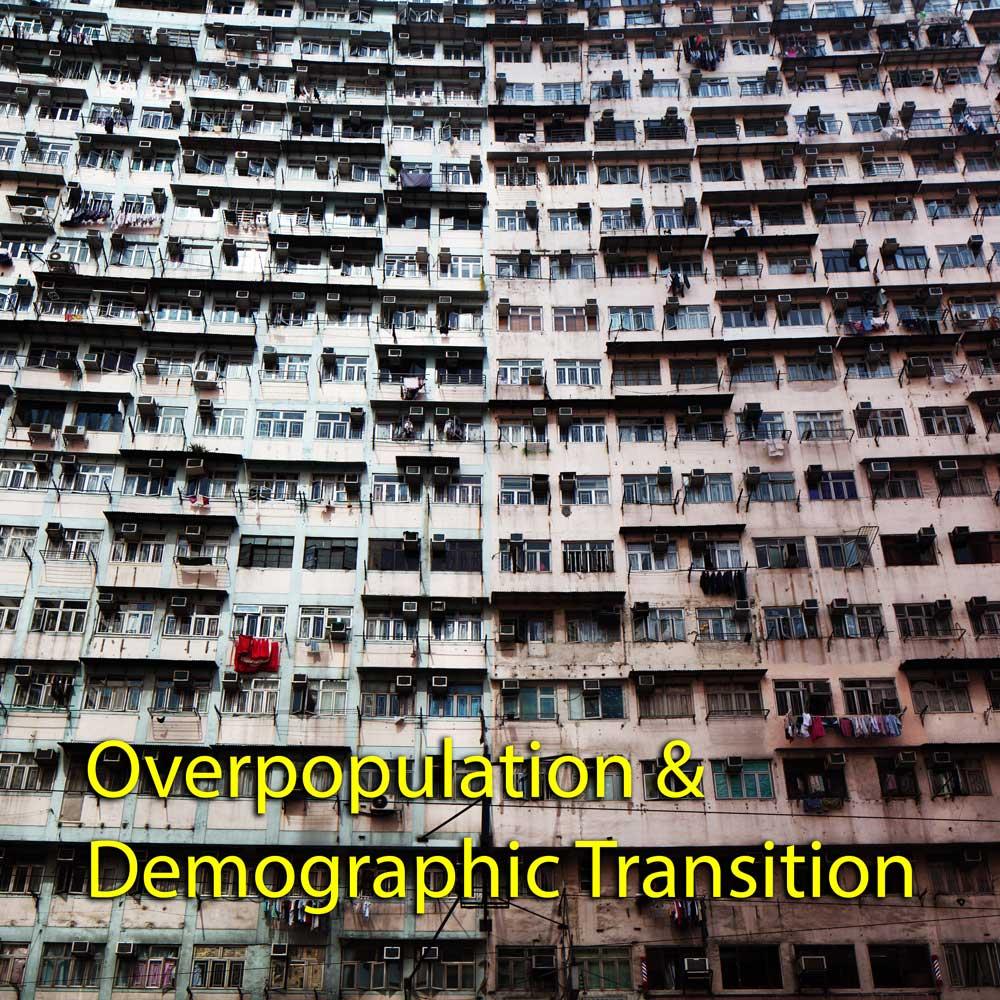 Overpopulation & Demographic Transition - Instagram Post