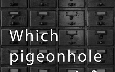 Algorithms and Pigeonholes